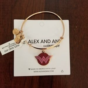 Alex and Ani Color Infusion Bracelet